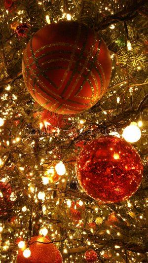 2016年のクリスマス