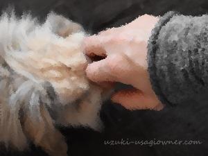 うさぎの爪で蕁麻疹が