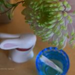 好みの菊の花を選んで、ラッキーアクション風水をしてみよう「重陽の節句」