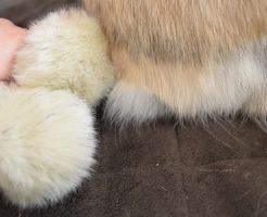うさぎのしっぽと、靴下に付いている飾りのボンボン