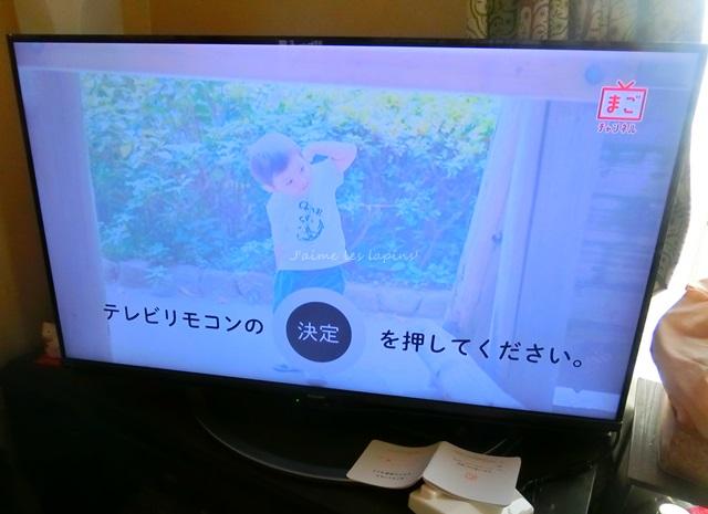 HDMIケーブルを挿したら、テレビの画面がまごチャンネルになっていたところ