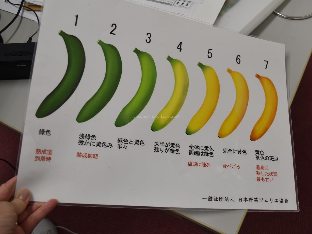 野菜ソムリエ講座バナナ熟度