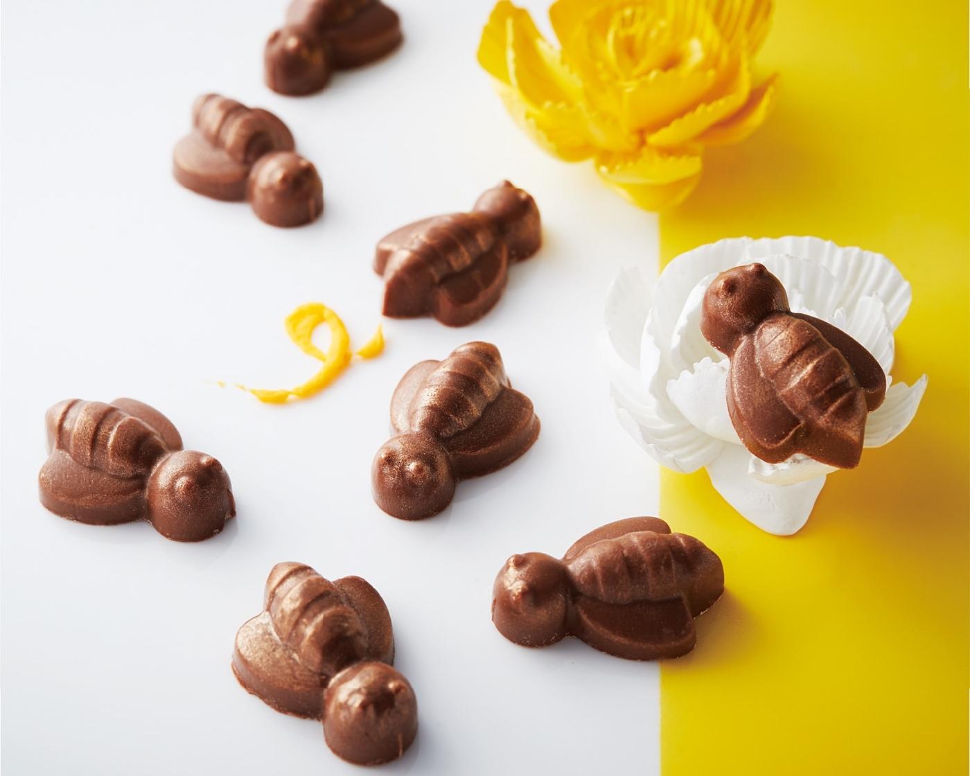フェリシモ幸せのチョコレート「はちみつチョコレート」