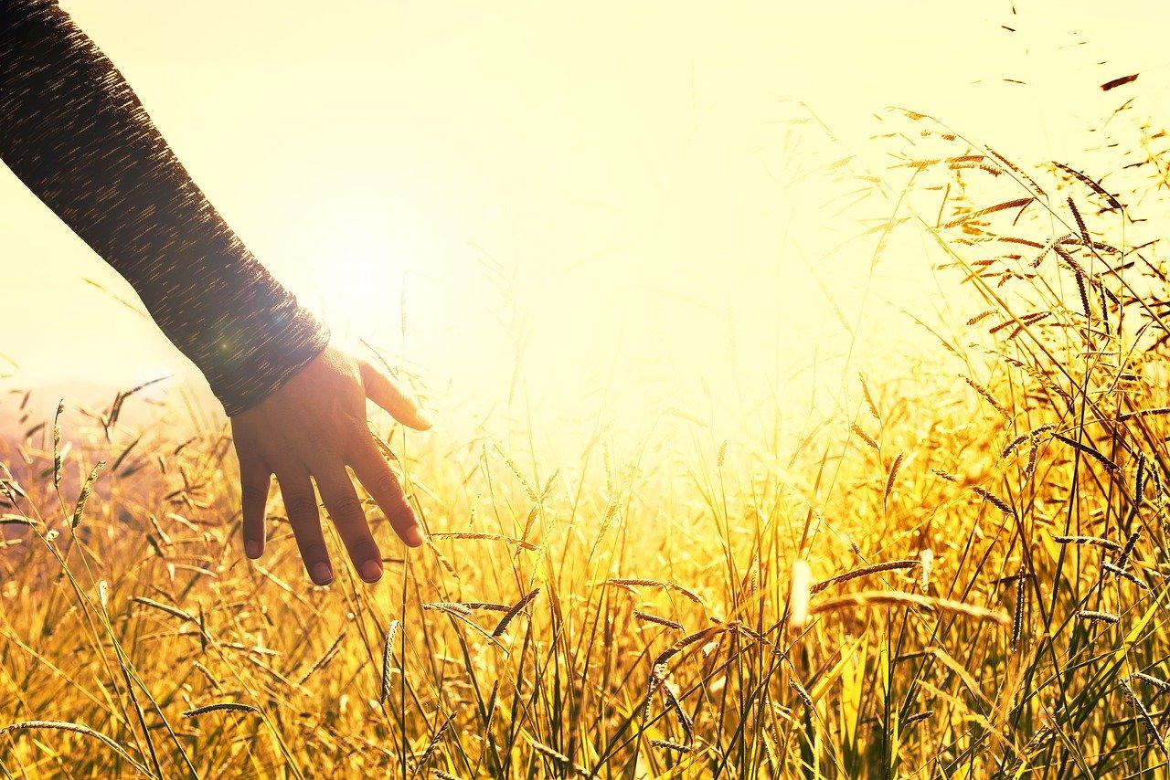 秋の日の傾きイメージ