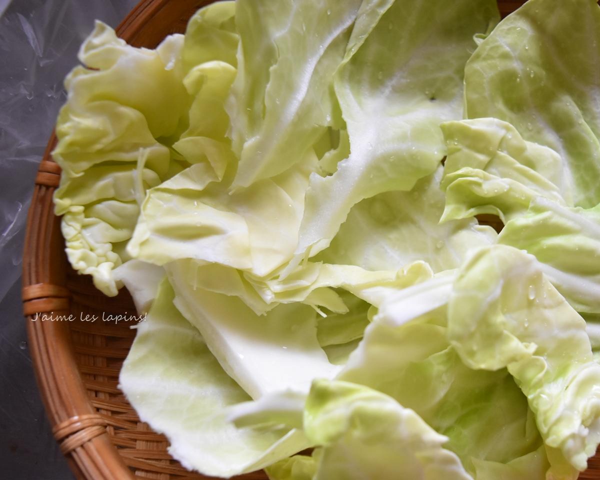 キャベツで干し野菜をつくる