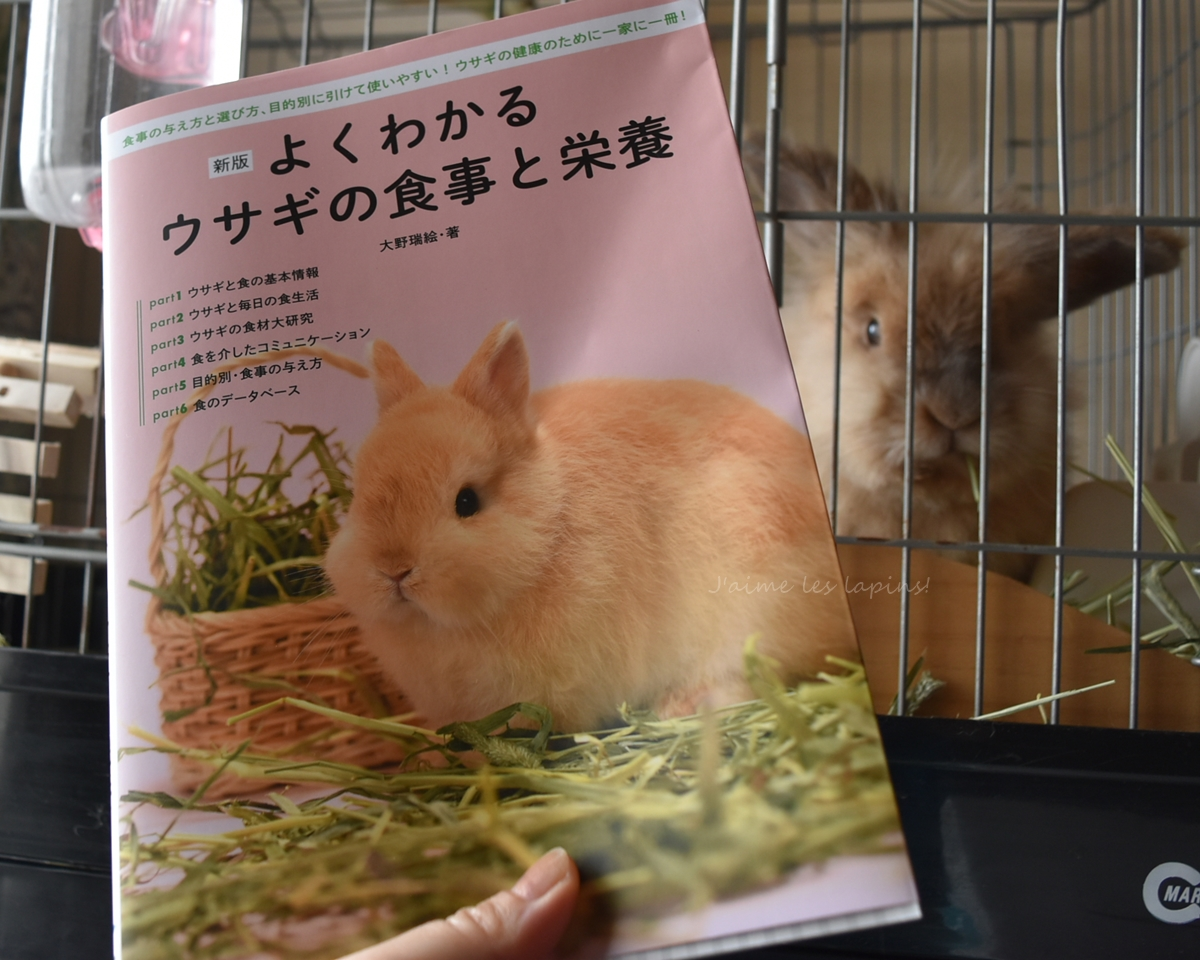 よくわかるウサギの食事と栄養