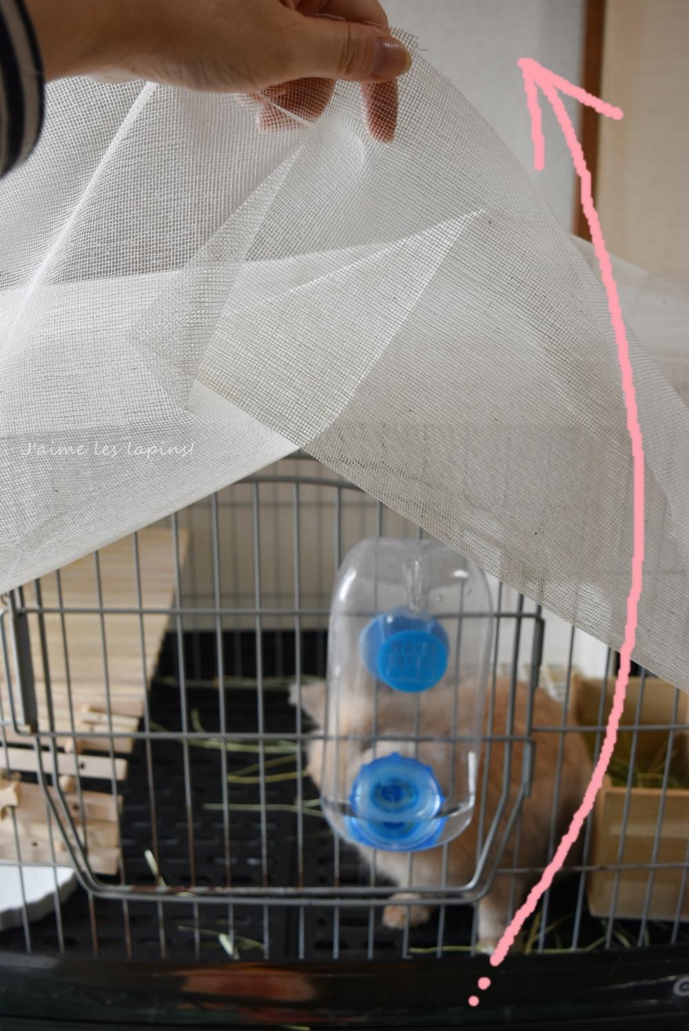 オープンザ蚊帳カーテン