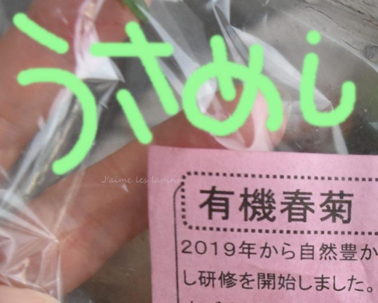 うさぎが食べて良い野菜・春菊の紹介