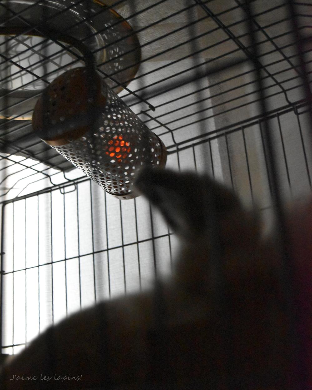 小二郎のマルカンペットヒーター