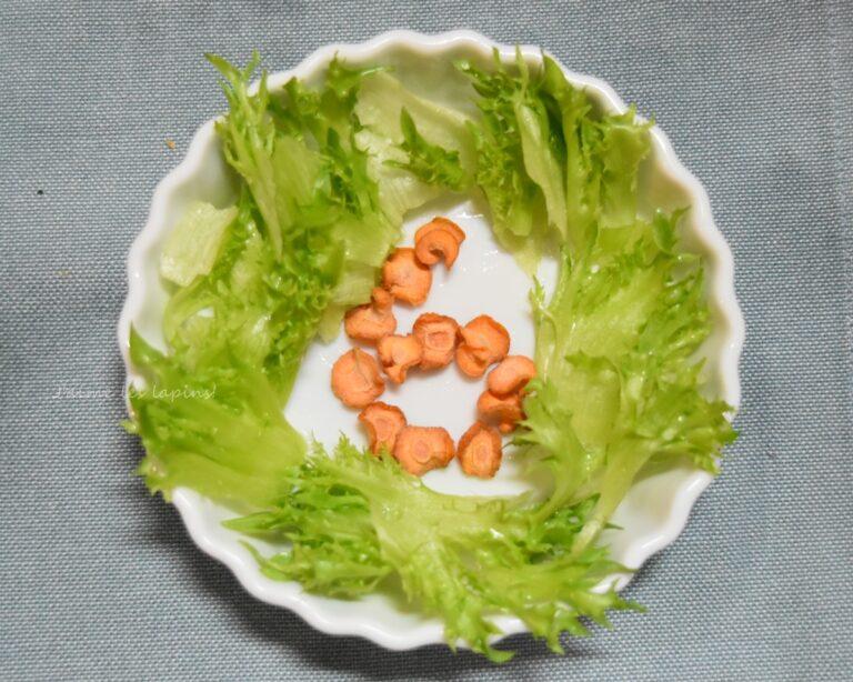 生野菜のレタスと乾燥ニンジン
