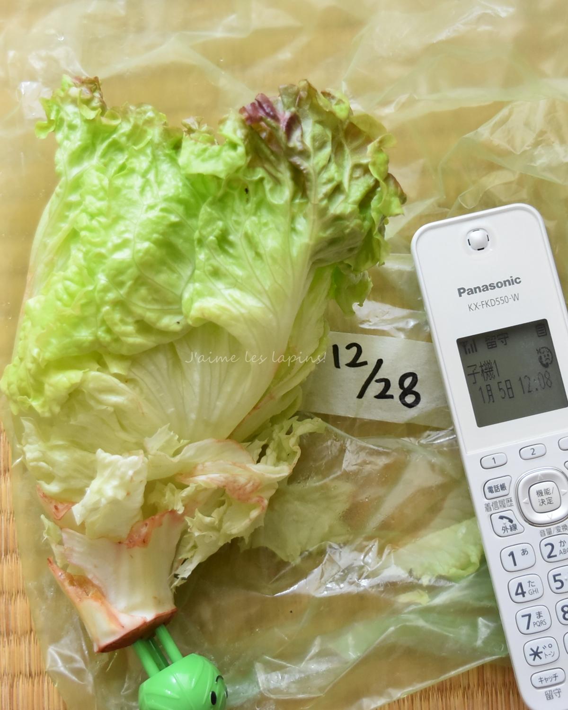 ベジシャキちゃんを使って1週間経った野菜