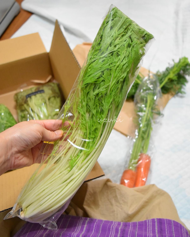 ナチュラルハートの固定種水菜