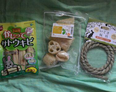 うさぎの玩具3種類