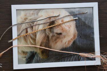 虎次朗の写真とうさぎ色の組紐