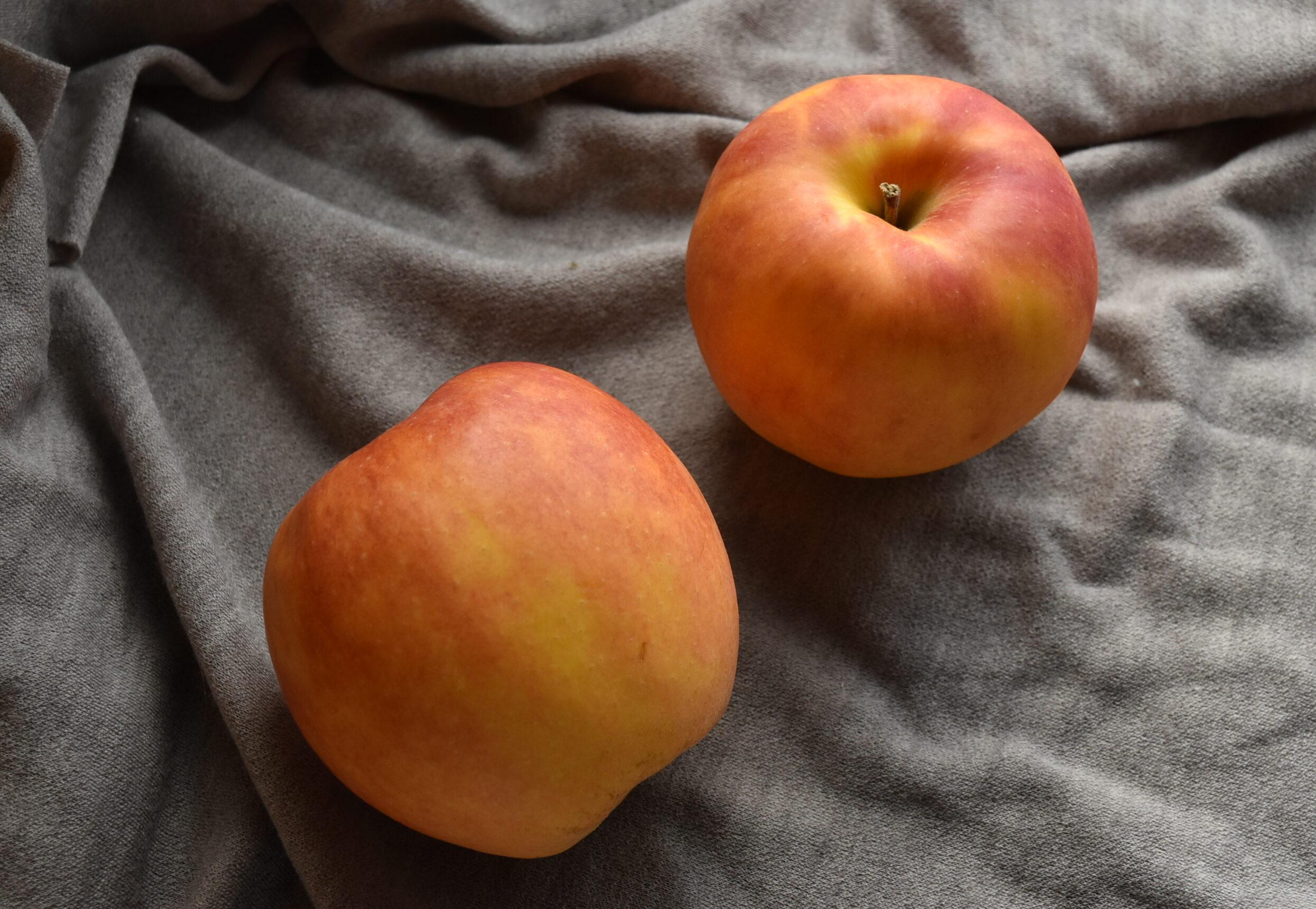 りんご2つ「さんさ」