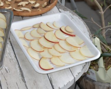 うさぎのおやつ作り「干しリンゴ」