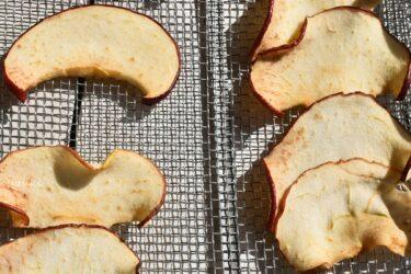 2日目の干しリンゴのアップ